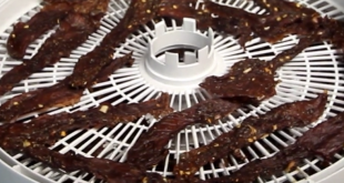 thai jerky marinaded with lemon grass on a white dehydrator tray